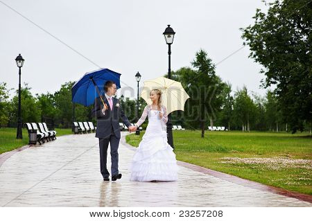 Bride And Groom At Wedding A Walk In Park