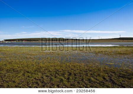 Grasland und Feuchtgebiete