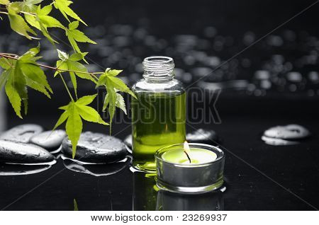 tranquil spa scene-green ivy with candle and massage oil on pebbles