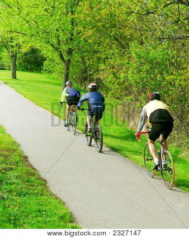 Radfahren In einem Park