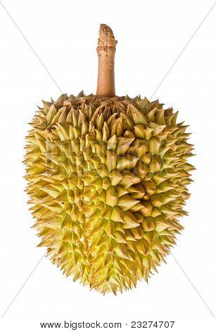 Durian, King Of Tropical Fruit