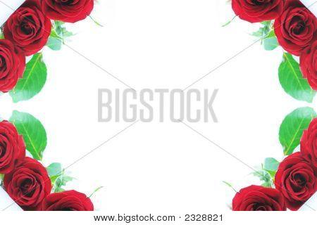 Beautiful Red Roses Adorn The Corner Borders 2
