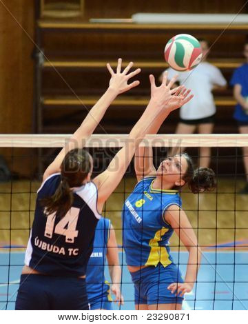 KAPOSVAR, HUNGARY - APRIL 24: Barbara Balajcza (8) strikes the ball at the Hungarian NB I. League woman volleyball game Kaposvar (blue) vs Ujbuda (black), April 24, 2011 in Kaposvar, Hungary.