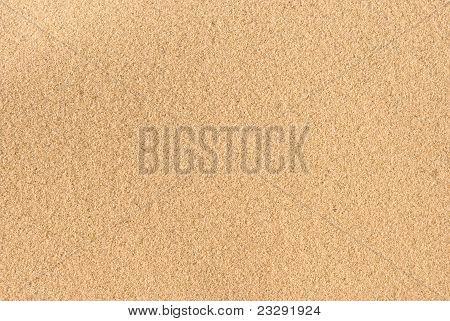 Sandy Beach Background