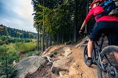 Mountain Biker Riding Cycling In Autumn Forest poster