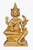 pic of brahma  - Golden brahma isolated on white background - JPG