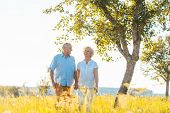 Romantic senior couple holding hands while walking together on a field in the countryside in summer poster