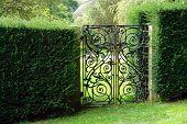 stock photo of entryway  - Classical design black wrought iron gate in a beautiful green garden - JPG