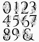 Vector Hand Drawn Floral Numbers Monogram Or Logo. Numerals And Ampersand With Flowers And Branches, poster