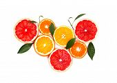 Citrus Fruits Isolated On White Background. Isolated Citrus Fruits. Pieces Of Lemon, Pink Grapefruit poster