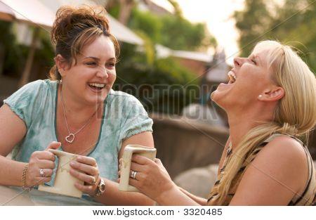 Freundinnen genießen Sie ein Gespräch