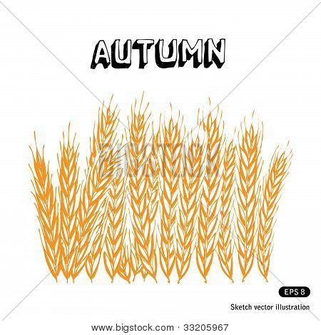 Agriculture illustration