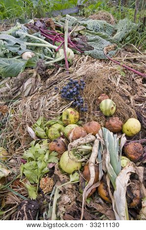 Compost with Fruit