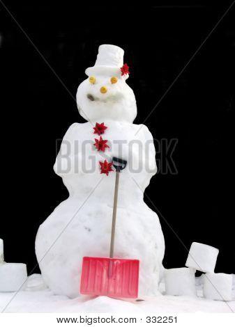 A Real Snowman