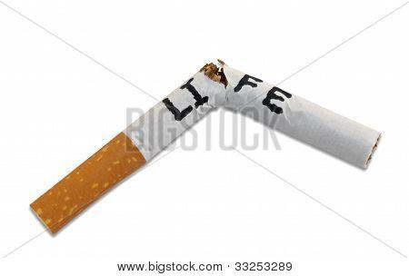 Smoking Shortens Life