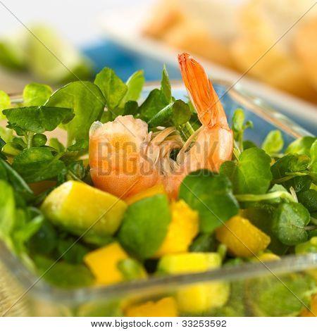 Shrimp, Mango, Avocado and Watercress Salad