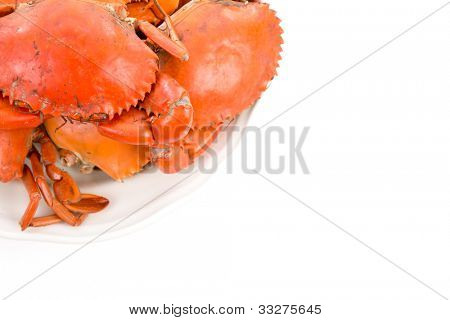 Steamed crabs on white plate