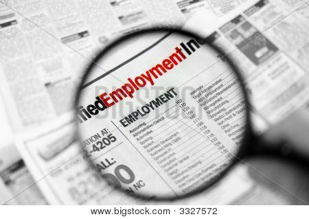 Caça de emprego 2