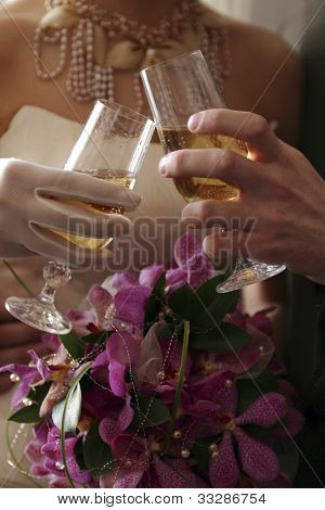 Newlywed couple toasting each other with glasses of champagne.