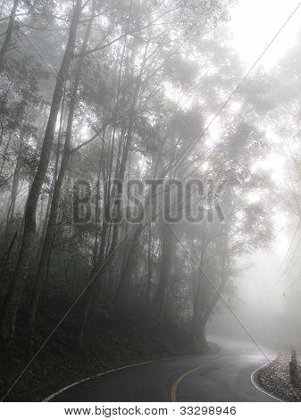 Kurve Weg im Nebel