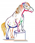 Colorful Decorative Portrait Of Pony Standing In Profile On A Stump, Training Pony. Vector Isolated  poster
