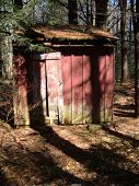 picture of backwoods  - An old and long abandoned shack in the back woods - JPG
