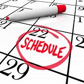 The word Schedule circled on a calendar to encourage you to live an organized life and keep track of