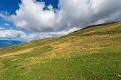 Green Pastures On The Italian Alps In Summer, Monte Baldo Near The Lake Garda, Verona Province, Vene poster
