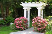 Pretty garden arbor with pink flowers. Also available in vertical.