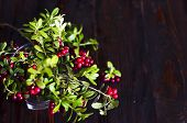 Bouquet Of Red Ripe Lingonberries In A Glass On A Dark Wooden Background. Traditional Vegetation Of  poster