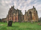 Melrose Abbey Cemetary Low Vantage poster