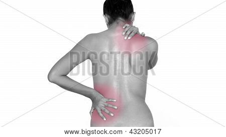 Woman Massaging Her Back