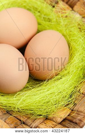 Brown easter eggs are on wattled plate with sisal green fibre, close up