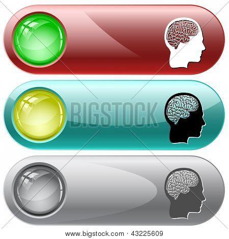 Human brain. Raster internet buttons.