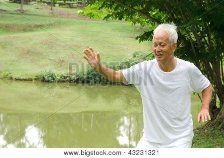 Chinese Senior Performing Tai Chi On Green Outdoor