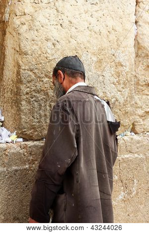 Unidentified  Man Praying At The Wailing Wall (western Wall)