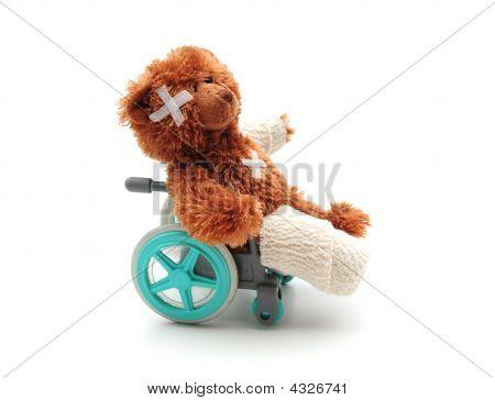 Bear In A Wheelchair