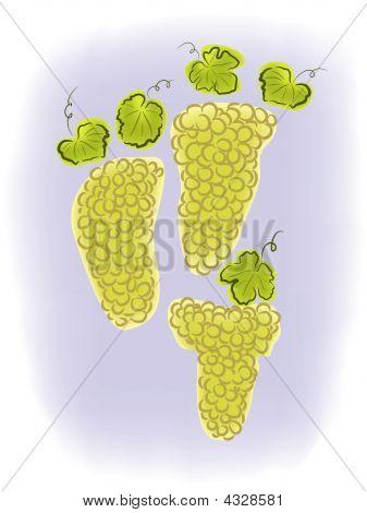 Grapeswatercolor.ai