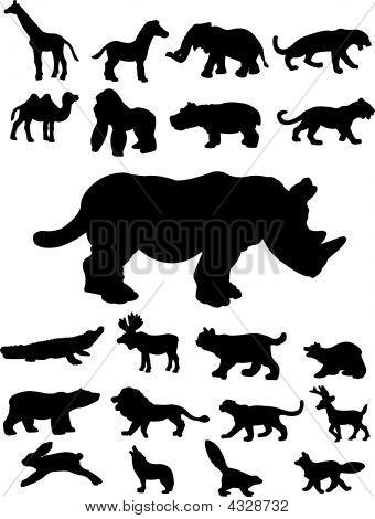 Twenty-one Animal Silhouettes