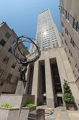 picture of rockefeller  - NEW YORK CITY  - JPG