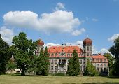 Polish Palace poster