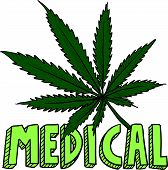 stock photo of just say no  - Doodle style medical marijuana leaf sketch in vector format - JPG