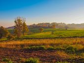 picture of bute  - Landscape panorama view of Piedmont hills in Northern Italy - JPG