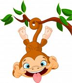 picture of sticking out tongue  - Cute baby monkey hamming on a tree - JPG