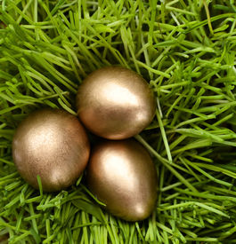 pic of chucky  - Three golden eggs are in the green grass - JPG