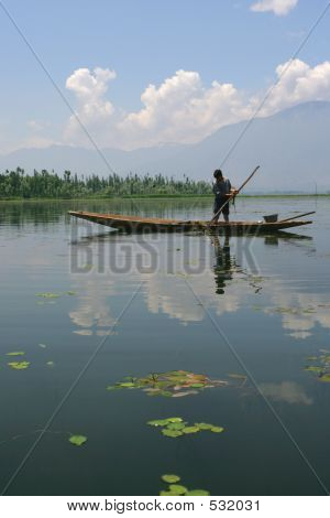 Boy Collecting Lake Grass