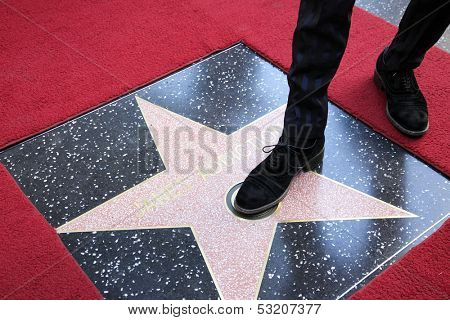 LOS ANGELES - OCT 30: Perry Farrell at a ceremony where 'Jane's Addiction' was honored with a star on the Hollywood Walk of Fame on October 30, 2013 in Los Angeles, California