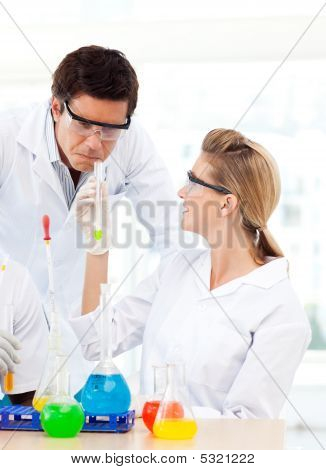 Scientists Studying Test-tubes