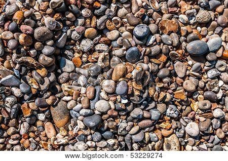 Beach As Treasure Trove