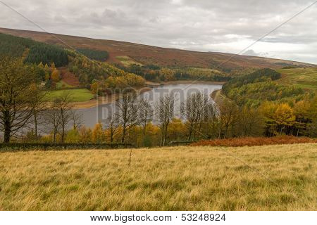 Autumn In The Derwent Valley